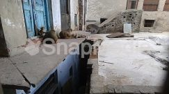 Alley, Alleyway, Animal, Archaeology, Architecture, Bell Tower, Building, Bunker, Cat, City, Concrete, Corridor, Crypt, Demolition, Flagstone, Floor, Furniture, Home Decor, Housing, Human, Indoors, Interior Design, Machine, Mammal, Path, Pavement, Person