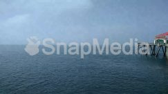 Animal, Architecture, Back, Bird, Building, Coast, Dock, Horizon, Nature, Ocean, Outdoors, Pier, Port, Sea, Shoreline, Sky, Tower, Water, Waterfront