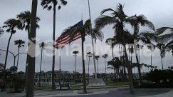 American Flag, Architecture, Arecaceae, Asphalt, Automobile, Building, Car, City, Downtown, Flag, Grass, Human, Monument, Palm Tree, Person, Plant, Symbol, Tarmac, Town, Transportation, Tree
