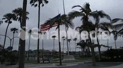 American Flag, Architecture, Arecaceae, Building, City, Downtown, Flag, Human, Metropolis, Palm Tree, Path, Person, Plant, Symbol, Town