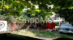 Arbour, Arecaceae, Automobile, Backyard, Building, Car, Countryside, Flagstone, Garden, Housing, Human, Hut, Nature, Offroad, Outdoors, Palm Tree, Patio, Person, Plant, Porch, Road, Rural