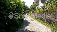 Alley, Alleyway, Arbour, Art, Building, Bush, City, Countryside, Dirt Road, Flagstone, Garden, Graffiti, Gravel, Human, Nature, Outdoors