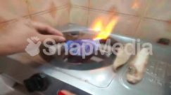 Animal, Appliance, Bonfire, Bread, Burger, Burner, Confectionery, Cooker, Cream, Creme, Culinary, Dessert, Electrical Device, Finger, Fire, Flame, Food, Forge, Gas Stove, Hand, Human, Ice Cream, Indoors, Lobster, Oven, Person, Sea Life, Seafood, Stove, Sweets