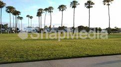 Arecaceae, Automobile, Building, Car, City, Field, Golf Course, Grass, Human, Lawn, Oak, Outdoors, Palm Tree, Park, Path, People, Person, Plant