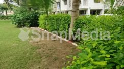 Arbour, Backyard, Building, Bush, City, Cottage, Countryside, Fence, Garden, Grass, Hedge, Herbal, Herbs, Hotel, House