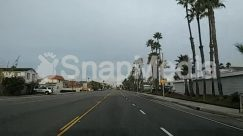 Architecture, Arecaceae, Asphalt, Automobile, Building, Car, City, Coupe, Downtown, Freeway, Highway, Intersection, Light, Metropolis, Nature, Outdoors, Palm Tree, Path, Pedestrian, Plant, Road, Sports Car, Street, Tarmac, Town