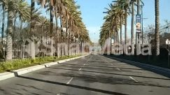 Advertisement, Arbour, Arecaceae, Asphalt, Boardwalk, Bridge, Building, City, Electric Pole, Forest, Freeway, Garden, Grass, Grove, High Rise, Highway, Jeep, Land, Lawn, Nature, Outdoors, Palm Tree, Plant Tree, Road Sign, Sun Light