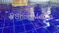 Animal, Brick, Clothing, Ice, Mammal, Nature, Outdoors, Pool, Sport, Sports, Swimming, Swimming Pool, Water