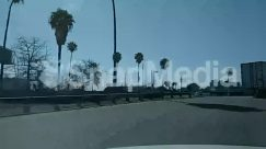 Airfield, Airport, Alloy Wheel, Architecture, Arecaceae, Asphalt, Automobile, Bridge, Building, Bumper, Car, Car Dealership, Car Wheel, City, Construction Crane, Coupe, Downtown, Freeway, Grand Theft Auto, High Rise, Highway, Intersection, Lamp Post, Light, Machine, Metropolis, Moving Van, Outdoors, Overpass, Palm Tree, Parking, Parking Lot, Plant, Road, Sedan, Spire, Spoke, Sports Car, Steeple, Street, Suv, Tarmac