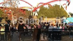 Amusement Park, Animal, Building, City, Coaster, Downtown, Fence, Human, Person, Railing, Roller Coaster, Theme Park, Town, Urban, Vacation, Zoo
