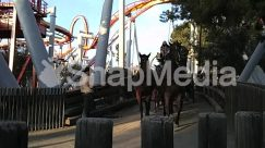 Amusement Park, Animal, Apparel, Bridge, Buggy, Building, Cannon, Carriage, Funeral, Horse, Horse Cart, Human, Luggage, Machine, People, Person, Roller Coaster, Theme Park, Transportation, Truck, Vehicle, Wagon, Wheel