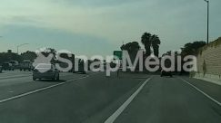 Asphalt, Automobile, Building, Car, Freeway, Highway, Intersection, Nature, Outdoors, Palm Tree, Path, Pedestrian, Plant, Road, Road Sign, Sign, Sport, Street