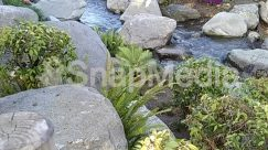 River,Creek,stream