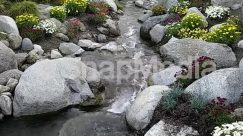 Nature,Creek,stream,knotts