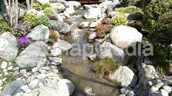 Countryside, Creek, Land, Landscape, Nature, Ocean, Outdoors, Path, Plant, Pond, River, Rock, Sea, Shoreline, Stream, Vegetation, Water, Wilderness, Yard