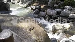 Outdoors,Creek,stream with rocks
