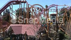 Amusement Park, Animal, Bridge, Building, City, Coaster, Gate, Roller Coaster, Theme Park, Town, Urban, Water, Zoo