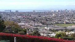 Aerial View, Architecture, Blossom, Building, Bush, City, Downtown, Fence, Flower, Garden, Hedge, High Rise, Housing, Human, Landscape, Metropolis