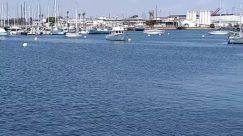 Barge, Boat, Building, City, Dinghy, Dock, Harbor, Marina, Pier, Port, Sailboat, Town, Transportation, Urban, Vehicle, Vessel, Water, Watercraft, Waterfront