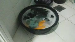 Bowl, Washing, Tub, Indoors, Hot Tub, Laundry, handwashing clothes, manual laundry, dirty clothes