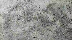 Concrete, Wall, Texture, Ground, Rug, Stain, Asphalt, Tarmac, Tar, Mold, Mud