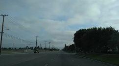 Road, Highway, Freeway, Utility Pole, Plant, Tree, Palm Tree, Arecaceae, Automobile, Car, Transportation, Vehicle, Lamp Post, Building, Grass