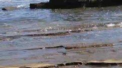 Rock, Water, Transportation, Vehicle, Nature, Outdoors, Oil Spill, Animal, Mammal, Ocean, Sea, Leisure Activities, Flood, Art, Building