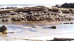 Nature, Outdoors, Water, Sea, Ocean, Rock, Shoreline, Coast, Oars, Watercraft, Vessel, Vehicle, Transportation, Animal, Beach