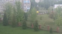 Nature, Tree, Plant, Urban, Building, Vegetation, Outdoors, Yard, City, Town, High Rise, Housing, Abies, Fir, Apartment Building