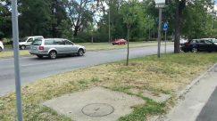 Automobile, Vehicle, Car, Transportation, Path, Road, Wheel, Machine, Motorcycle, Plant, Vegetation, Truck, Van, Urban, Sidewalk