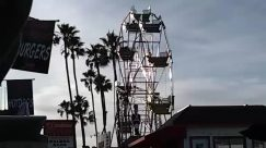 Person, Amusement Park, Ferris Wheel, Construction Crane, Plant, Tree, Arecaceae, Palm Tree, Apparel, Clothing, Theme Park, Photography, Photo, Grand Theft Auto, Vacation