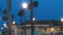 george floyd, Protest, Light, Lighting, Traffic Light, Plant, Tree, Arecaceae, Palm Tree, Lamp Post, Building, Pedestrian, huntington beach