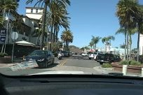 main street, Building, Palm Tree, Arecaceae, Automobile, Car, Street, Neighborhood, store fronts