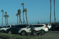 Vehicle, Car, Automobile, Tree, Plant, Arecaceae, Palm Tree, Field, Grass, Parking Lot, Parking, ocean