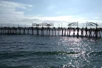 Water, Waterfront, Dock, Pier, Port, Bridge, Building, Redondo beach