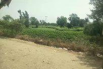 Field, Countryside, Rural, Soil, Farm, Land, Grassland, Agriculture, Vegetation, Plant, Pasture, Ground, Farm Plow, Building, Shelter
