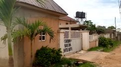 Building, Villa, Housing, House, Yard, Plant, Tree, Flagstone, Arecaceae, Palm Tree, Vegetation, Gate, Garden, Roof, Backyard