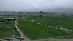 Field, Grassland, Countryside, Paddy Field, Plant, Vegetation, Land, Grass, Bench, Road, Furniture, Rural, Forest, Tree, Woodland