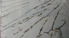 Marble, Invertebrate, Arachnid, Spider, Granite