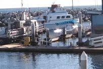 Water, Waterfront, Vehicle, Port, Dock, Harbor, Pier, Watercraft, Vessel, Boat, Military, Marina, Ship, Cruiser, Navy