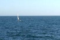 Boat, Vehicle, Sailboat, Ocean, Sea, Water, Watercraft, Vessel, Yacht, Adventure, Hydrofoil, Dinghy, Horizon, Sky, Military