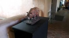 Wood, Furniture, Wildlife, Sculpture, Statue, Art, Bird, Reptile, Turtle, Sea Life, Tabletop, Bronze, Table, Dinosaur, Zoo