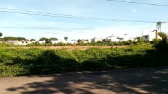 Road, Vegetation, Plant, Bush, Building, Fence, Hedge, Neighborhood, City, Town, Cable, Suburb, Street, Wheel, Vehicle