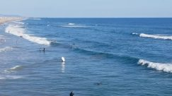 Water, Ocean, Sea, Swimming, Sport, Sports, Sea Waves, Shoreline, Bird, Beach, Coast, Adventure, Vehicle, Surfing, Landscape