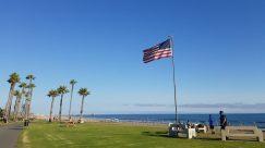 Plant, Grass, Flag, Symbol, Bench, Furniture, Lawn, American Flag, Park, Tree, Field, Arecaceae, Palm Tree