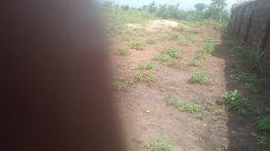 Ground, Field, Countryside, Plant, Grass, Rural, Grassland, Land, Vegetation, Farm, Soil, Building, Shelter, Pasture, Housing
