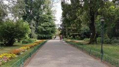 Plant, Vegetation, Tree, Woodland, Forest, Grove, Land, Garden, Grass, Lawn, Park, Arbour, Path, Conifer, Road, Botanical garden