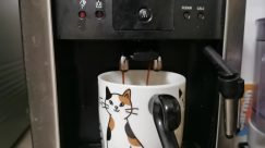 Coffee Cup, Cup, Beverage, Drink, Espresso, Pet, Cat, Latte, Milk, Appliance, Electronics, Hardware, Computer, Mouse, Dessert
