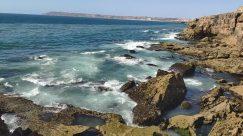 Ocean, Water, Sea, Promontory, Rock, Shoreline, Coast, Sea Waves, Beach, Bird, Cliff, Cove, Cave, Wilderness, Land