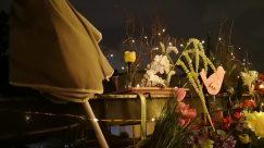 Plant, Blossom, Flower, Art, Flower Arrangement, Ikebana, Jar, Ornament, Pottery, Vase, Petal, Flower Bouquet, Flare, Light, Lighting